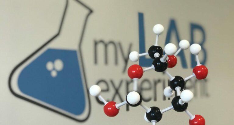 I 9 esperimenti sulla glicemia del MY Lab Experiment